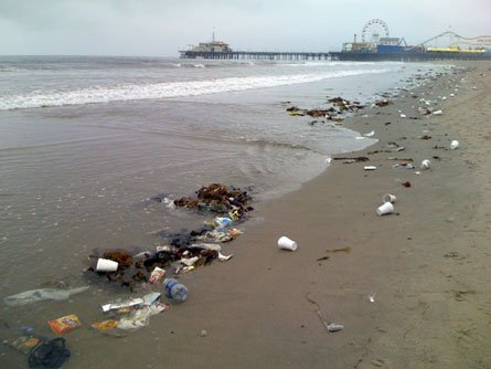 Ca santa monica beach cleanup at tower 20 for Clean beaches in california