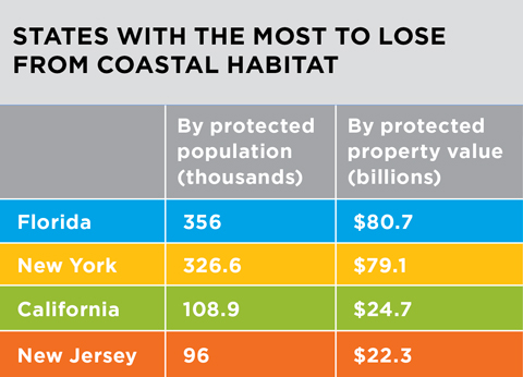 A table labeled 'States with the most to lose from coastal habitat.' The states are Florida, New York, California, and New Jersey. Florida and New York both have around 335,000 thousand people protected by coastal habitats whereas the other states have around 100,000. Additionally, Florida and New York both stand to lose $80 billion in protected property, whereas the latter states have about $23 billion to lose.