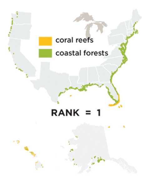 A map of the distribution of coral reefs and coastal forests in the United States, the #1 source of coastline protection. Coastal forests are highly prevalent in the east and southeast. Coral reefs are highly prevalent near the tip of Florida and in Hawaii.