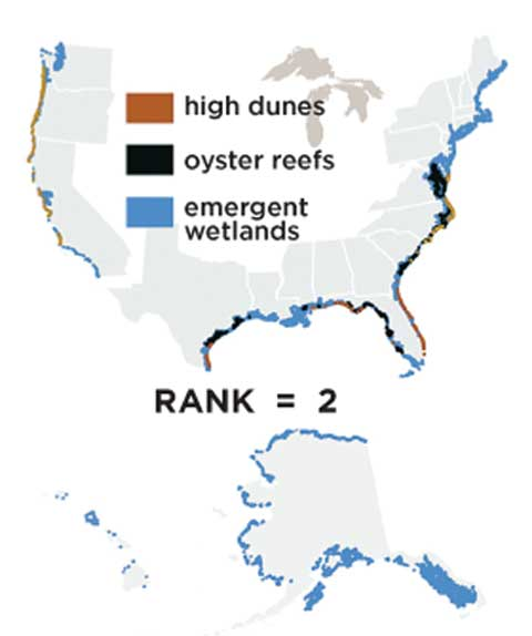 A map showing the distribution of high dunes, oyster reefs, and emergent wetlands in the US, the #2 source of coastline protection. Emergent wetlands are prevalent throughout the US. Oyster reefs can be found in the east, and high dunes in the southeast and along the western coast.