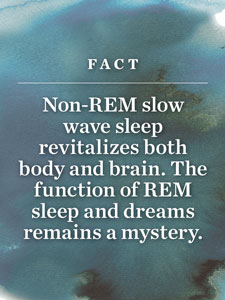 Sleep Fact #1